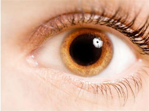 imagenes de ojos de jaguar esto es lo que tus ojos dicen sobre tu salud salud180