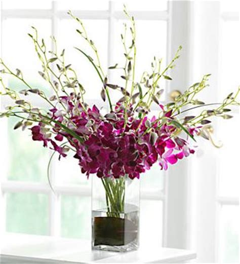 Arrange Flowers In A Vase by Purple Orcide Flowers Arrange With Square Glass Vase Jpg