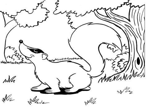 maestra de infantil animales salvajes para colorear maestra de primaria dibujos de animales salvajes para
