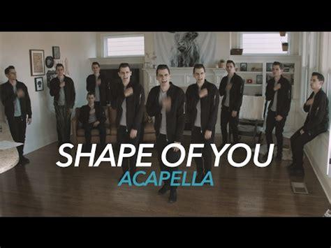 ed sheeran perfect acapella zedd alessia cara stay acapella youtube music lyrics