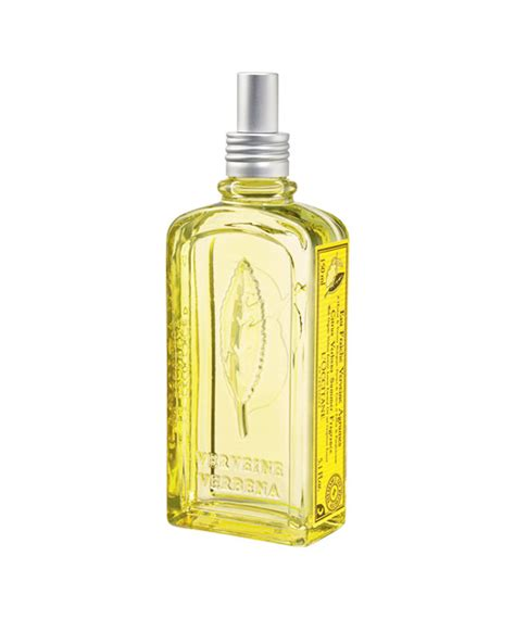 Summer Fragrance Citrus Is In by Best Perfume No 17 S Secret Things