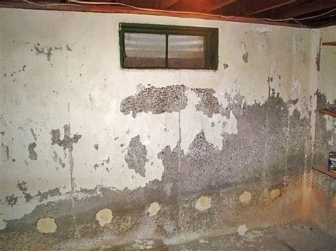 the case against waterproof paints wall coatings why