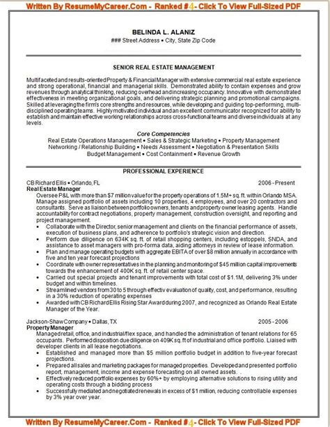 It Professional Resume Exle by Proffesional Resume Resume Cv