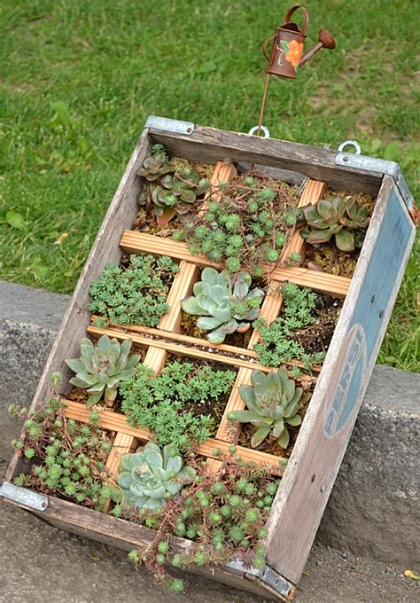 wood container garden container garden contest in lewiston offers inspiring