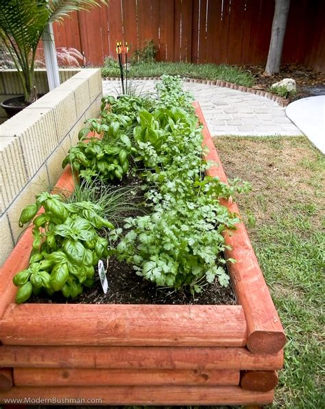 Herb And Vegetable Garden Ideas 10 Herb Garden Ideas For Your Home