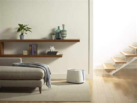 blog everything humidifier blog best humidifier hub