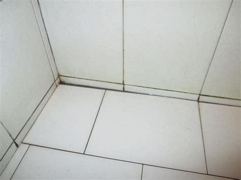 schwarze fugen quot schwarze fugen in der dusche quot hotel calypso in matala