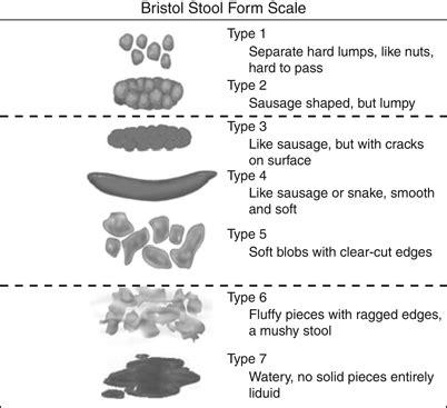 diagram 1diagram 1 this shows the bristol stool form