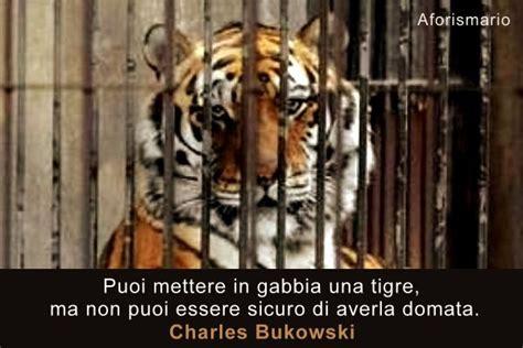 animali in gabbia aforismario 174 zoo circo e corrida frasi sugli animali
