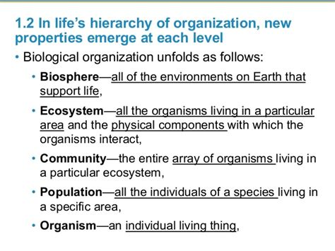 biography definition biology hierarchy definition biology
