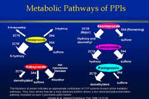 How Does Proton Inhibitor Work New Perspectives In The Management Of Acid Related