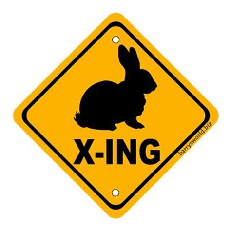 rabbit crossing barry s world