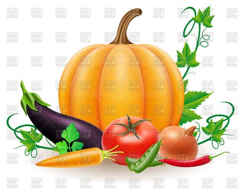 fall harvest peppers vegetable food art print of by patchoffrut 115 00 art pumpkin and autumn harvest vegetables royalty free vector clip art image 86561 rfclipart