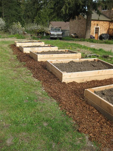 raised beds with bark mulch flickr photo sharing