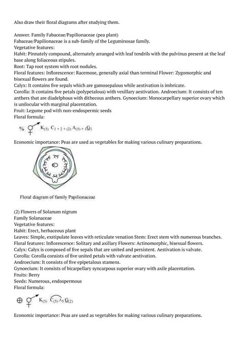 NCERT Solutions For Class 11 Biology Chapter 5 Morphology