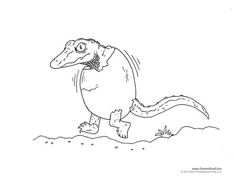 coloring page of american alligator american alligator coloring pages coloring pages