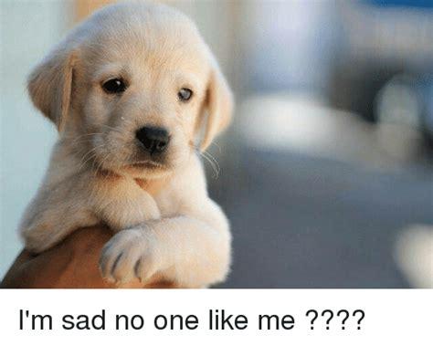 Sad No Meme - i m sad no one like me meme on me me