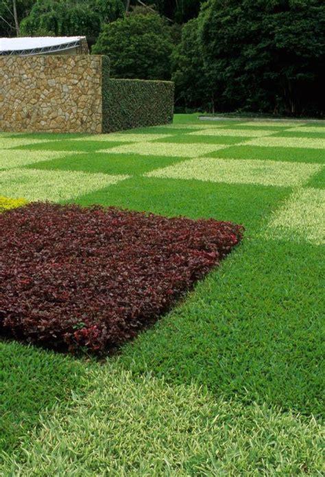 lawn alternative landscape inspiration
