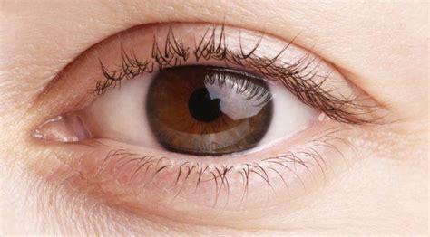 imagenes de ojos con orzuelos temblor en un ojo causas y tratamientos blog de cl 237 nica