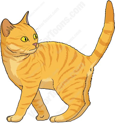 Gatto Clipart by Tabby Cat Clipart Orange Cat Pencil And In Color Tabby