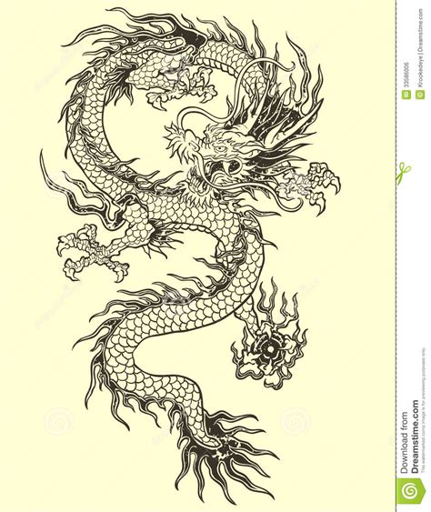 dragon tattoo vector illustration for asian illustration stock vector
