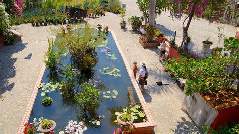 Vallarta Botanical Gardens Vallarta Botanical Gardens In Vallarta Jalisco Expedia