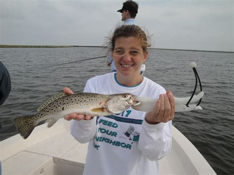 puppy drum fish tar pam guide service inner banks fishing charterstar pam guide service