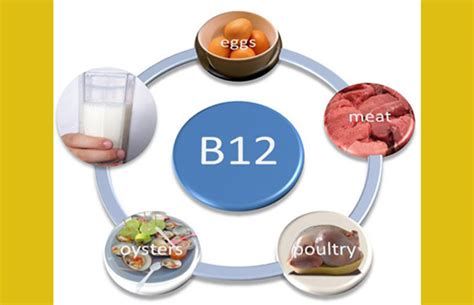 alimentos que contienen vitaminas b12 7 alimentos ricos en vitamina b12