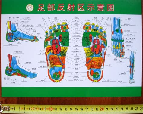 affiche acupuncture pied foot acupoints chart cartel
