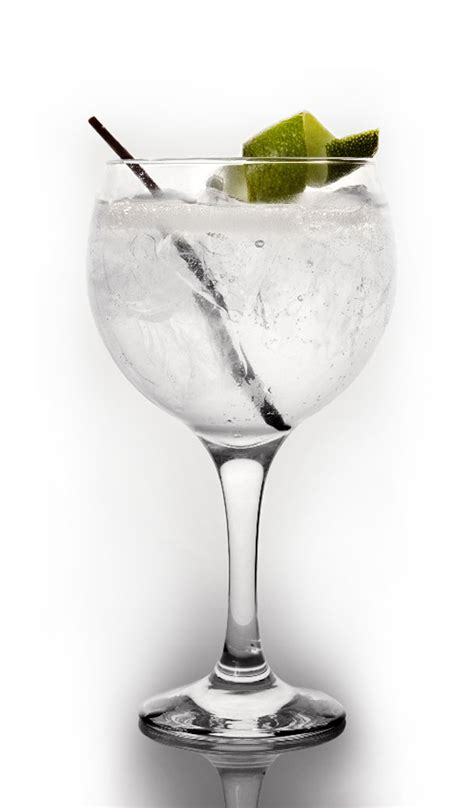 virgin gin and tonic recipe dishmaps