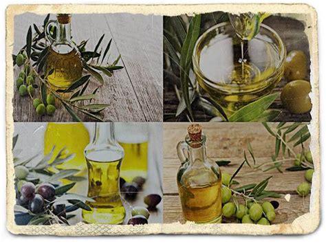 Minyak Zaitun Di Indonesia 7 manfaat minyak zaitun harga kandungan efek sing