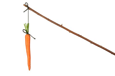 Turning A Carrot Into A Stick Fishing Stick That Is by The Carrot And Stick Approach To Health Care Delivery