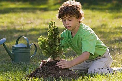 imagenes niños sembrando plantas un 225 rbol por cada objetivo comercial cumplido pa 237 s vasco