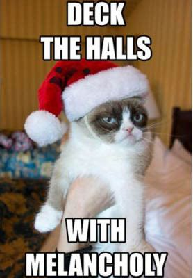 my 35 favorite grumpy cat memes part 2