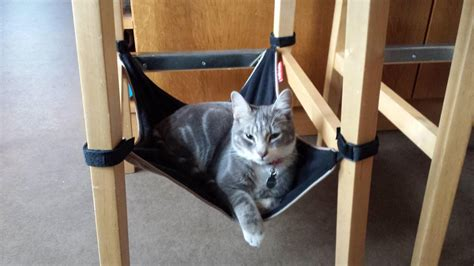 Chair Cat Hammock by Catcrib Cat Crib Space Saving Cat Hammock