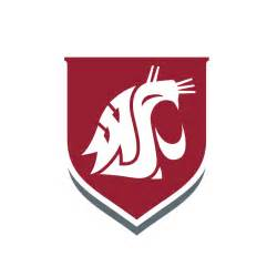 washu colors logos brand washington state