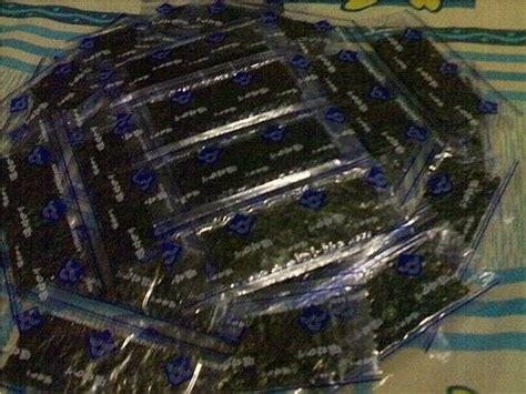 Sari Pie Blueberry Isi 25pcs dinomarket 174 pasardino aneka cemilan snack choco