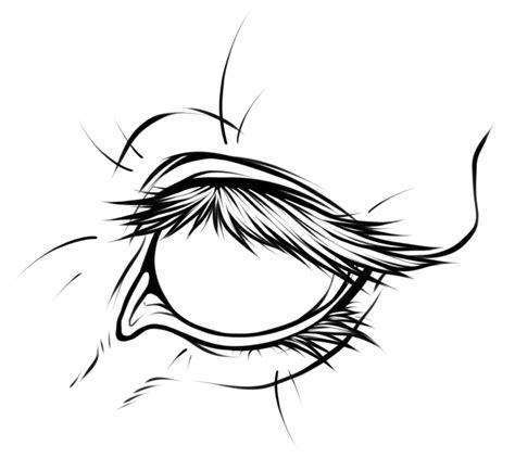 horse eye lineart by eternityspool on deviantart