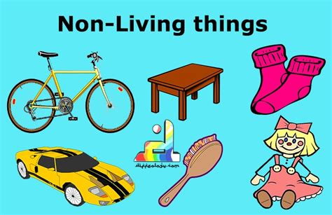 living and non living things what makes difference