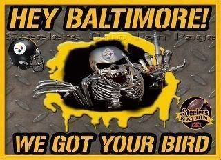 Steelers Vs Ravens Meme - 1000 images about teams vs teams on pinterest tony