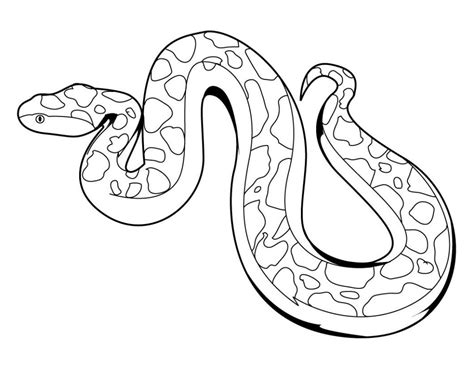 printable coloring page king cobra king cobra snake coloring pages download and print for