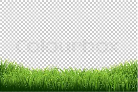 green grass clipart green grass border isolated on transparent background