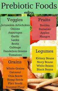 a list of prebiotic foods gut health probiotics probiotics pinterest prebiotic foods