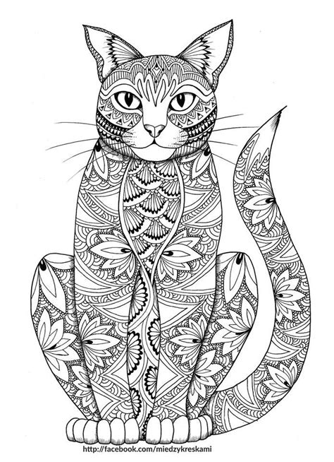 stay pawsitive cat coloring book for adults relaxing and stress relieving cat coloring pages coloring books volume 4 books 1000 ideas about colouring pages on