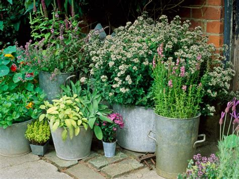 Small Container Garden Ideas Container And Small Space Gardening Diy
