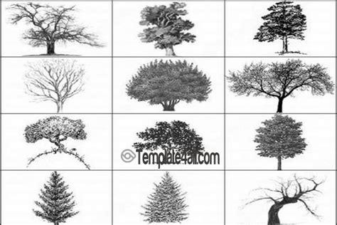 tree pattern brush awesome metal photoshop patterns to download