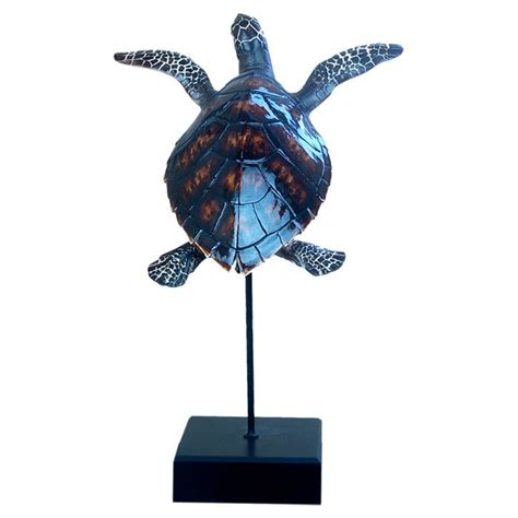 sea turtle decor turtles