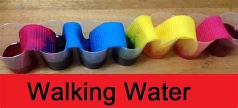 Walking Water Science Experiment for Kids   Families Magazine