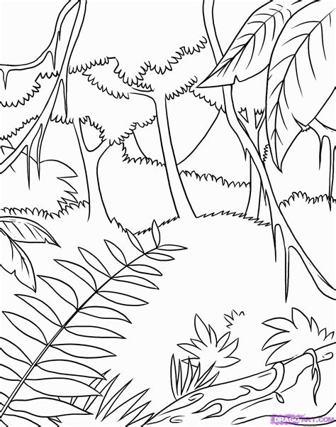 tropical leaves coloring pages 10 pics of tropical rainforest plants coloring pages