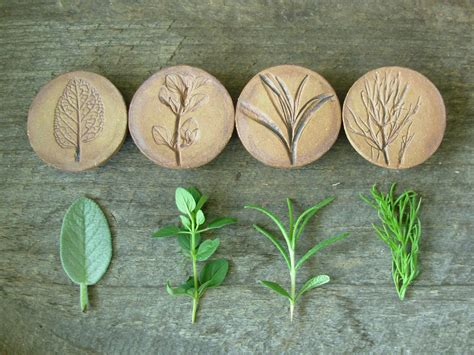stoneware herb magnetsset   includes thyme rosemary